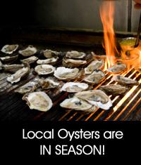 sidebar oysters Taste of the Beach