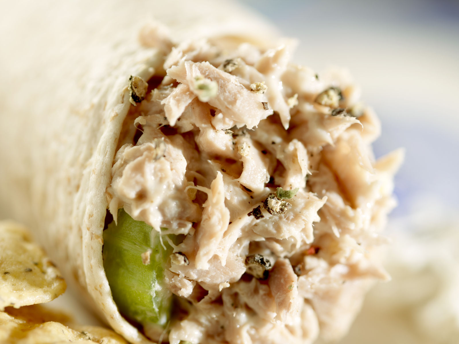 Fresh Grilled Tuna Salad Wrap with Grilled Onions, Roasted Roma ...
